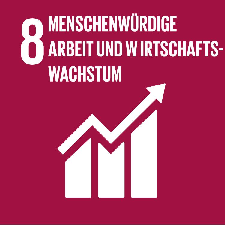 https://www.entwicklung.at/fileadmin/user_upload/Fotos/Logos/SDGs/08_Menschenwuerdige_Arbeit_und_Wirtschaftswachstum.jpg